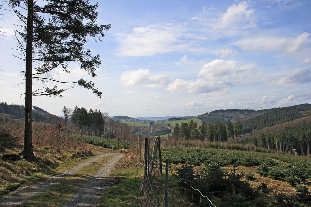 Blick von Föckinghausen nach Eversberg