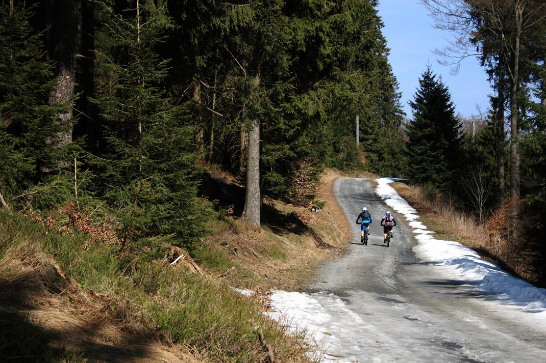Waldweg bei Willingen, Sauerland